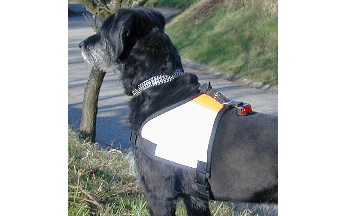 Kenndeckenbeleuchtung LED Diode Kenndecke am Hund