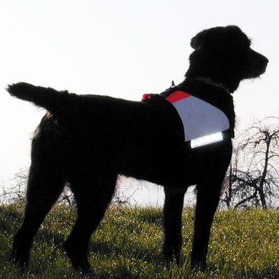 Rettungshunde Zubehör, Rettungshundearbeit