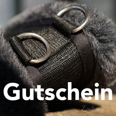 Gutscheine - Medi-Cheval und MedDogs