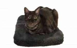 Katzendecke weich und kuschelig