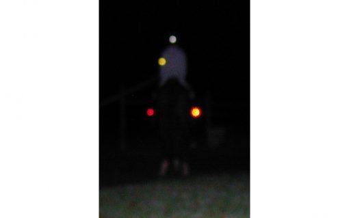 Reit Stiefelbeleuchtung Pferd von hinten sichtbar