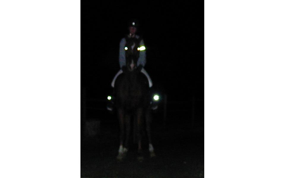 beleuchtung f r reit stiefel front und r cklicht sichtbarkeit vom pferd. Black Bedroom Furniture Sets. Home Design Ideas
